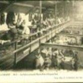 Postkaart - pantoffelfabriek - Aalst