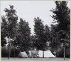 Molenwijk