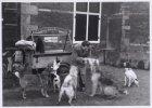 Een bakfiets met honden- en kattenvoer op de Nieuwmarkt, voor de Waag