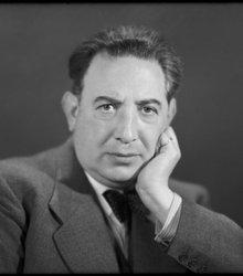 Albert Bernhard van Raalte