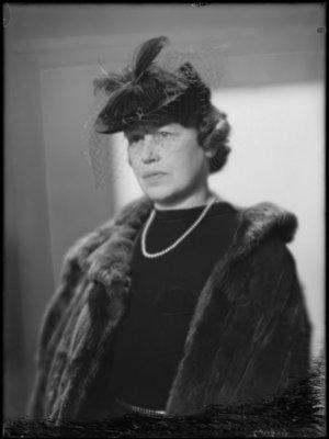 Cornelia Louise Heijink