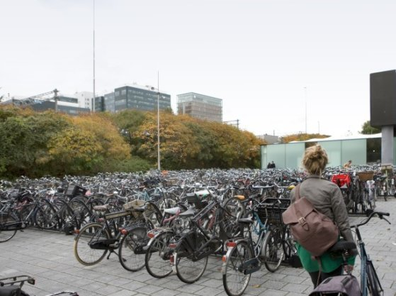 Fietsenstalling op de Arnold Schönberglaan gezien in noordoostelijke richting naar de ingang van Station Amsterdam Zuid en het talud van de Ringweg-Zuid