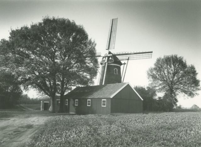 Bekijk alle foto's van Sint Hubert