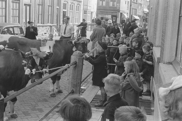 Foto: Fotostudio Jean Smeets, collectie BHIC 1907-004034