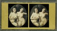 Visualizza Weiblicher Doppelakt anteprime su