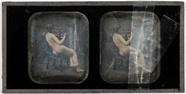 Miniaturansicht Vorschau von Erotic stereodaguerreotype of a woman playing…