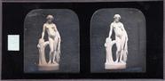 Visualizza Venus au bain anteprime su