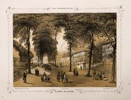 Visualizza Paris daguerréotypé No 20, Le Jardin des Plan… anteprime su