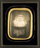 Miniaturansicht Vorschau von Portrait of Willem Nicolaas van der Burght