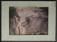Visualizza Study of rocks and foliage. anteprime su