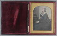 Visualizza A hand-tinted, three quarter length portrait … anteprime su