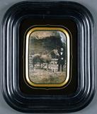 Visualizza Pferd, Hund und Herr, Frankreich, um 1850. anteprime su