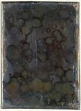 Miniaturansicht Vorschau von loose plate; unrecognizable image