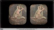 Visualizza Weiblicher Akt mit Schleier und Adler anteprime su