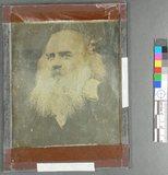 Thumbnail preview of Kopf eines alten Mannes mit großem Bart, die …