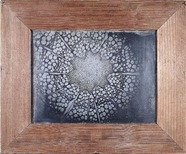 Visualizza Querschnitt durch den Stängel einer Clematis,… anteprime su