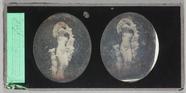 Visualizza A classical statue of a nude woman with garla… anteprime su