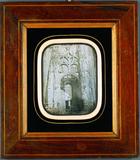 Visualizza Portal der Kathedrale von Albi anteprime su