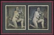 Visualizza Weiblicher Akt mit einem Bein auf dem Sofa kn… anteprime su