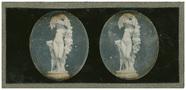 Visualizza Femme nue avec une chèvre anteprime su