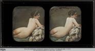Visualizza Weiblicher Akt (Rückenansicht) anteprime su