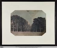Visualizza Ansicht eines Parks anteprime su