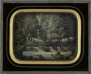 Visualizza Genève, Bastions: jardin botanique anteprime su
