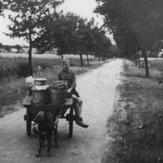 """Melk """"de witte motor"""" in Drenthe"""
