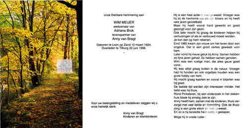 Willem Cornelis Joannes (Wim) Meijer