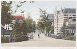 De Hendrik van Viandenstraat met brug over de West...