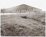 Ligboxenstal bij de boerderij Schothorsterlaan 6, ...