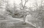 Uitzicht vanaf het huis Heiligenberg op het park a...