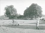 Boer Lagerweij geeft zijn paard beweging door te l...