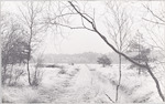 Het Hazenwater in Den Treek....