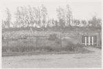 Door oorlogsgeweld verwoeste woning (boerderij?) a...