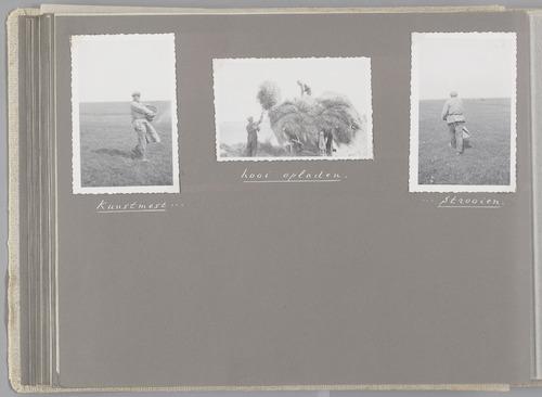 """Bladzijde uit het fotoalbum """"Beoosten de Eem"""", dat gewijd is aan de ruilverkaveling in dat gebied. Beelden van het werk in de polders: kunstmest strooien en hooi opladen."""