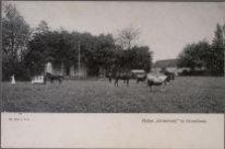 Groesbeek, Huize Groesbeek