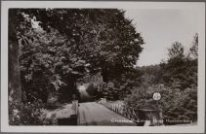 Groesbeek, Hooghe Hoenderbergh, Die