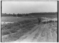 Vierhouten bij Nunspeet, Veluwe 1935