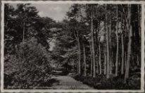 Groesbeek, Boschweg aan de Heumenschebaan