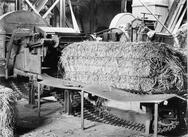 Algemeen : Interieuropname strokartonfabriek : strobaal ligt op machine