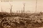 Houthulst: het bos van Houthulst tijdens de Eerste Wereldoorlog