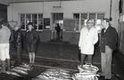 Nieuwpoort-Stad: visverkoop in de Vismijn
