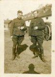 Brugge : Militaire dienstplicht