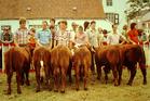 Wulpen: 50-jarig jubileum gevierd met landelijk feest en grote veeprijskamp