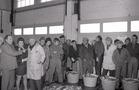 Nieuwpoort: visverkoop in de vismijn