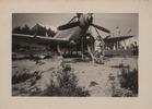 Koksijde: Jubeltentoonstelling van 1954