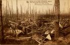 Houthulst: wrak van een vliegtuig in het bos van Houthulst tijdens de Eerste Wereldoorlog