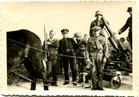 Pollinkhove: bevrijdingsstoet op 10 juni 1945