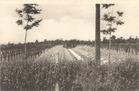 Zillebeke: verdwenen Duitse begraafplaats